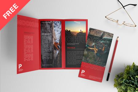 A4 Trifold Brochure Mockup Free