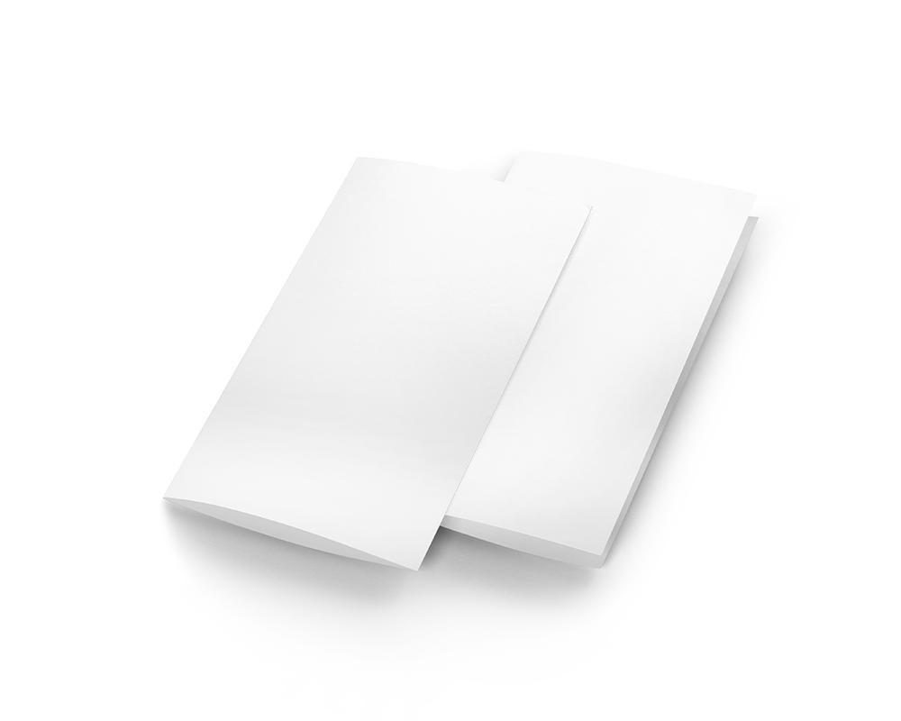 Free 2 Fold Brochure Mockup