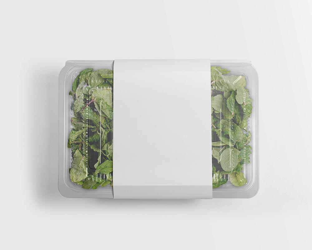 Free Food Plastic Packaging Mockup