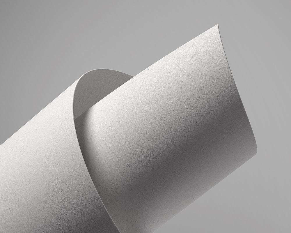 Free Logo on Paper Mockup