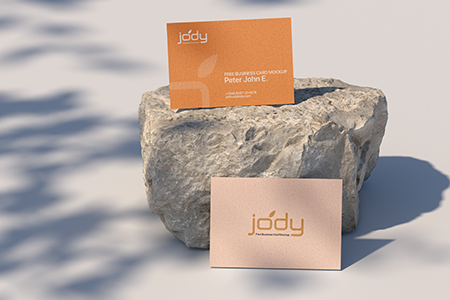 Free Two Business Card Mockup